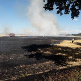 Feuer 2 – brennt Stoppelfeld