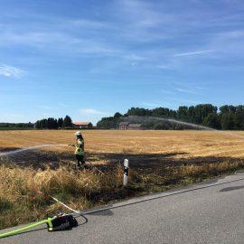 Feuer 2 AGO – brennt Feld