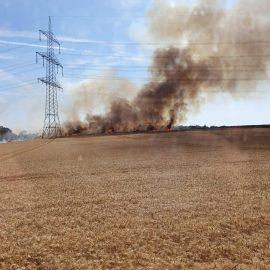 Feuer 2 – brennt Feld