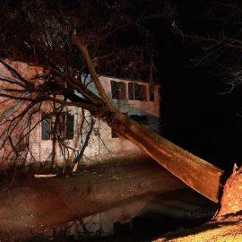 Hilfeleistung 1 – Baum auf Haus