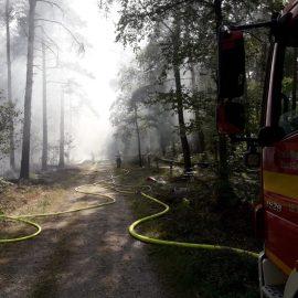 Feuer 2 AGO – brennt Gebüsch